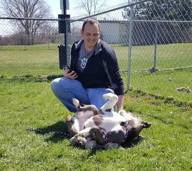 DaySmart volunteer pet shelter