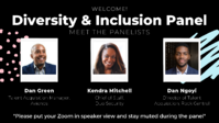 Virtual Panel Diversity & Inclusion Welcome Slide