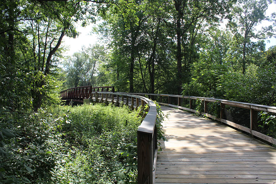 The 12 Best Hiking Trails in Metro Detroit