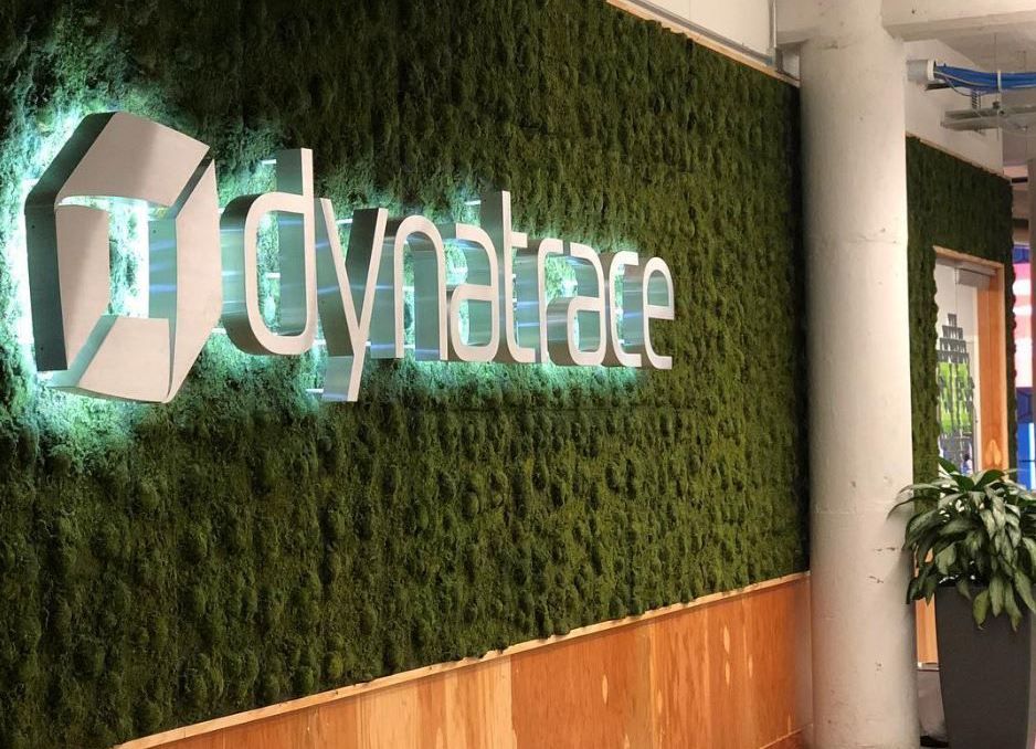 Dynatrace Detroit: a Software Company Growing on and off the Field