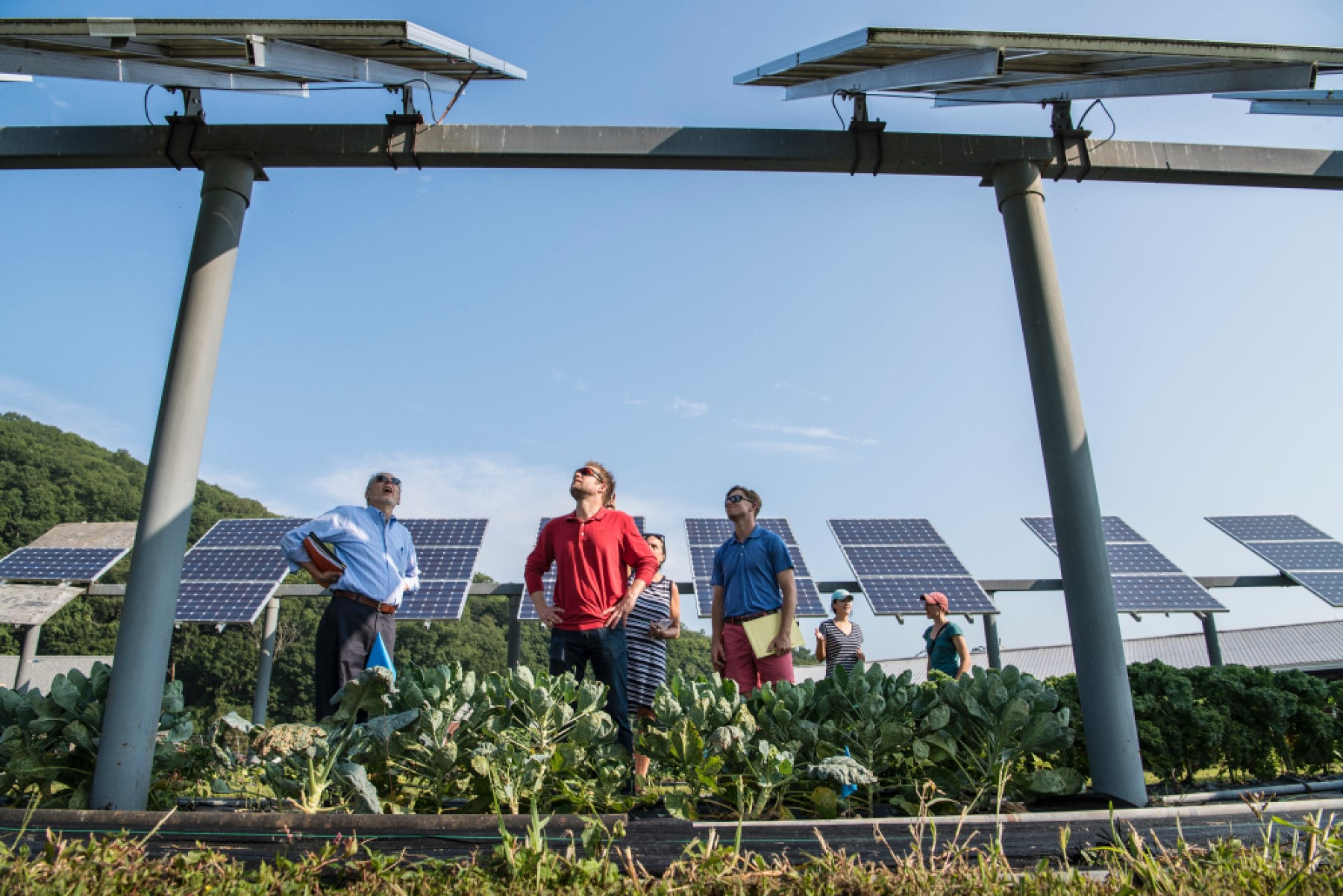 7 Midwest Sustainability Startups to Know
